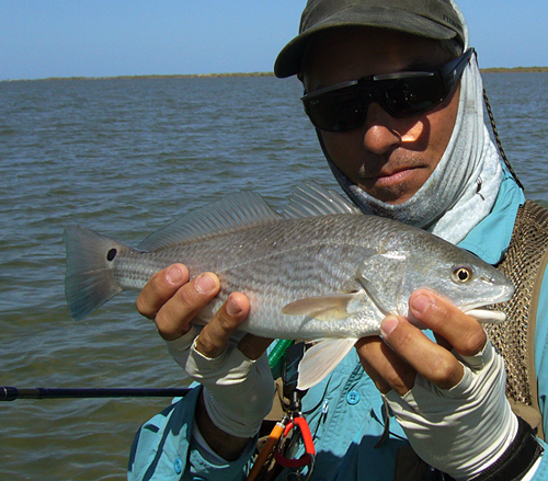 redfish lower laguna madre