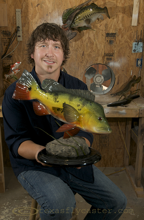 Peacock Bass by Josh Kelly