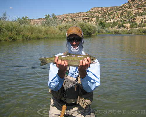 Rainbow trout on the San Juan Navajo Quality Waters