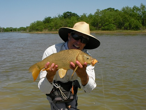carp on the fly texas flats fishing
