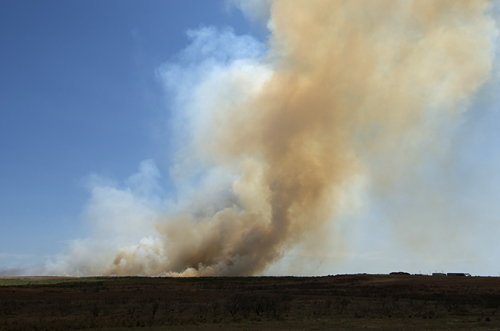 Texas Brush Fire during drought