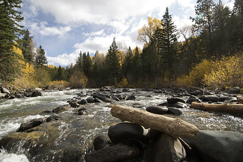 Southern Colorado Mountain Stream