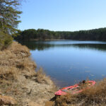 Fly Fishing For Chain Pickerel at Daingerfield State Park