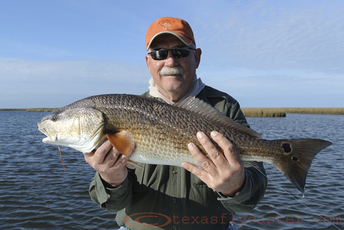 Louisiana redfish caught by jerry goodale 2012