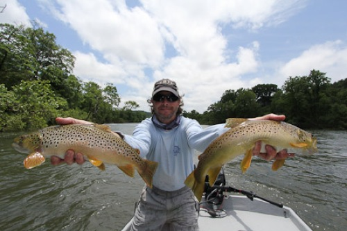 Fly fishing the white river and the norfork in arkansas for White river fishing guides