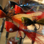 Fly Fishers, Think Ahead – Poppers Now Mean Big Bad Bass Later