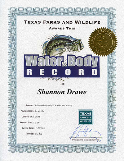 TPWD Water Body Record Lewisville Lake Texas Hybrid Bass