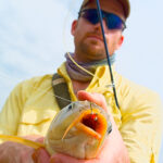Fly Fishing For Carp on Lake Ray Roberts – Early May Update