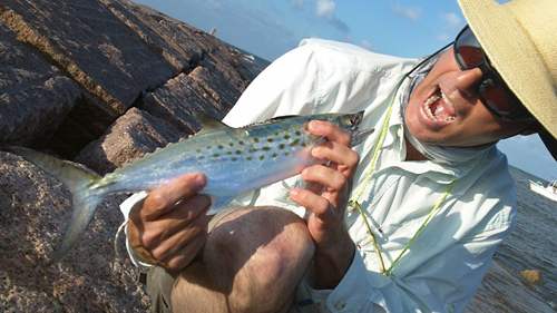 Spanish Mackerel caught on fly rod with Clouser.