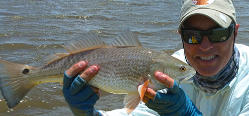 matagorda redfish