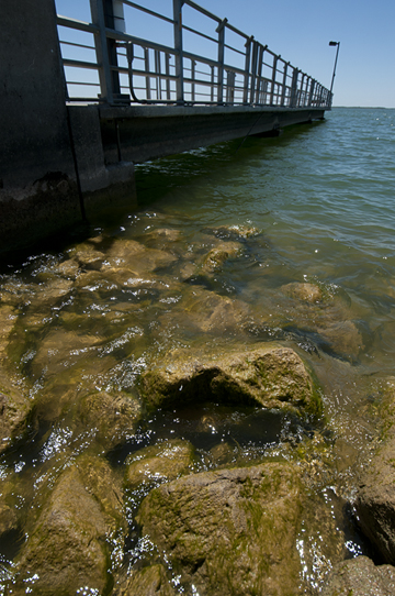 Clean rocks at the Isle du Bois fishing pier 2012
