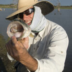 Fall Fly Fishing Patterns and Tips for North Texas Lakes