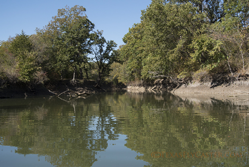 Creeks are Coves at LBJ Grasslands Black Creek Lake