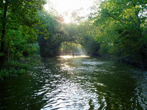 LWFF Courtesy Photo Brushy Creek