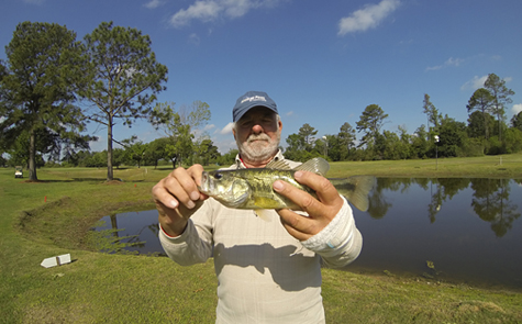 Green Healthy bass at Tomball Golf Course