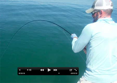texas fly fishing for jack crevalle in gulf of mexico