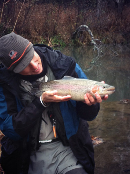 male rainbow trout