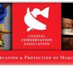 CCA Texas – Supports Changes to Current TPWD Regulations