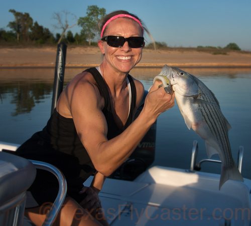 michelle with texoma hybrid