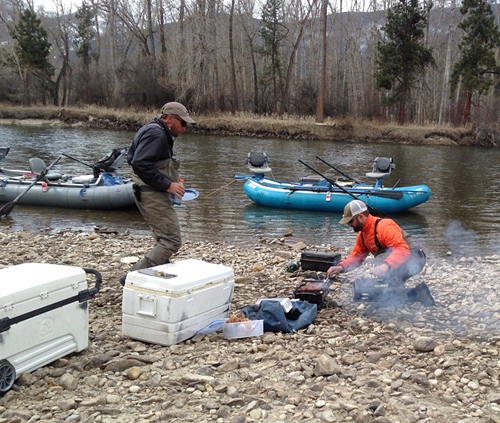 montana fly fishing joyce davis