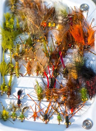 Carp fly box brays bayou