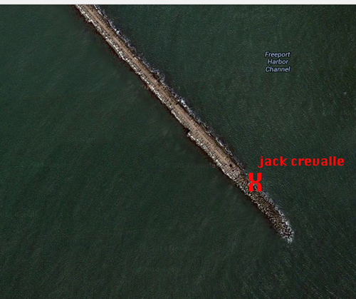 texas gulf coast fly fishing jetties
