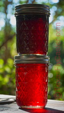 muscadine grape mustang grape jelly