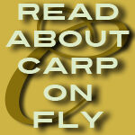carp on fly rod stories from texas fly caster