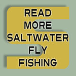texas saltwater fly fishing articles