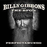 BillyGibbonsPerfect