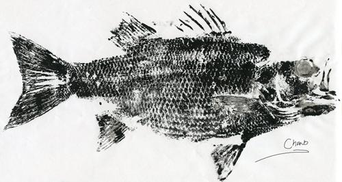texas fly caster gyotaku print