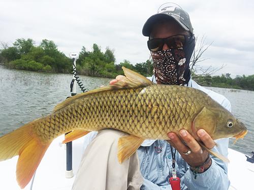 East Cape Fury Texas carp on fly