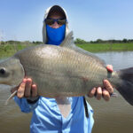 fly fishing guide lake ray roberts buffalo on fly