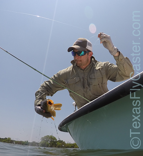 texasflyfishing for carp on fly