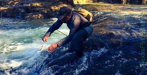 Fly Fishing Blue River Oklahoma