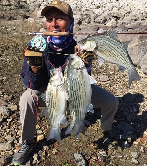 texasflyfishing hybrid bass on fly texas fly caster