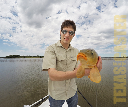 Carp on fly lake ray roberts texas fly fishing guide