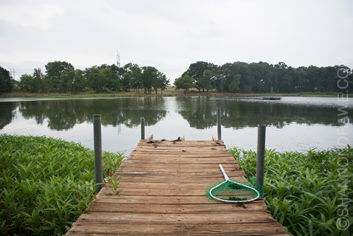 Bonham Texas Fly Fishing Pond Bass