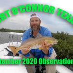 PORT O'CONNOR TEXAS OBSERVATIONS Early Fall 2020
