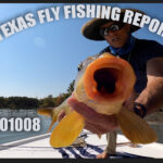 Texas Fly Fishing Report 201008 – October Surprise!