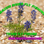 Brazos River Fly Fishing